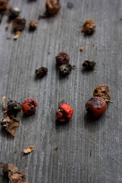 dried up berries on wood