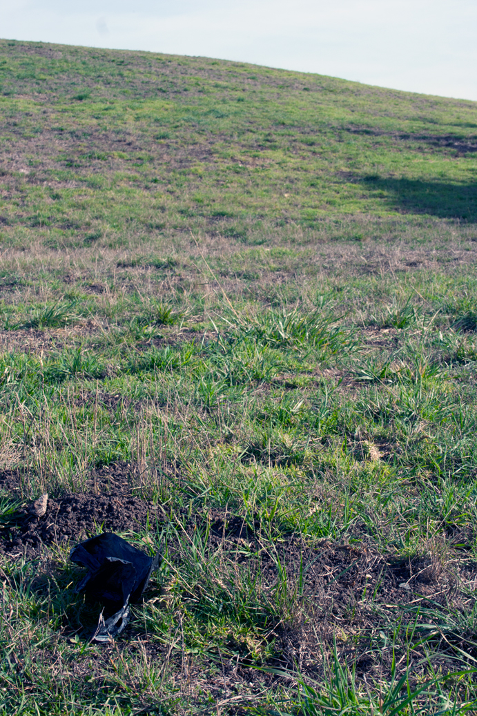 a black plastic bag on grass
