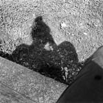 Self Portrait of my Shadow