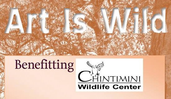 chintimini-wildlife-fundraiser-art-is-wild